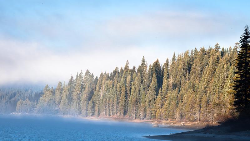 Morning Fog Burning Off, Bucks Lake CA