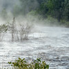 Foggy Morning and Spring Run-Off on Middle Fork Feather River