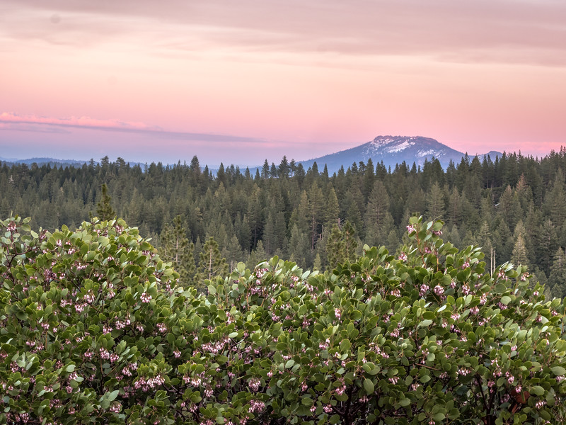Peachy Spring Sunset