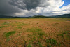 Stormy Skies, Mountain Range, and Pasture Land, Sierra County, CA