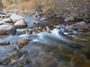 Riffle in Motion, North Yuba River CA