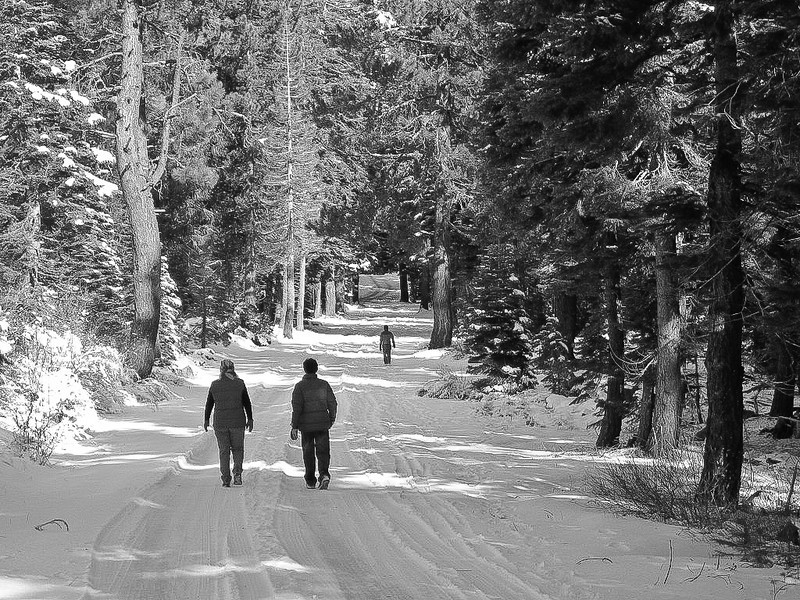 A Winter Walk in Plumas Eureka State Park, CA