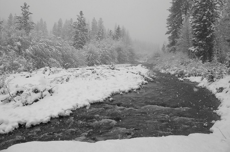 Snow Falling on Graeagle Creek on a Gray Winter Day, Graeagle CA