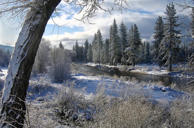 Snowy Scene, Blairsden CA