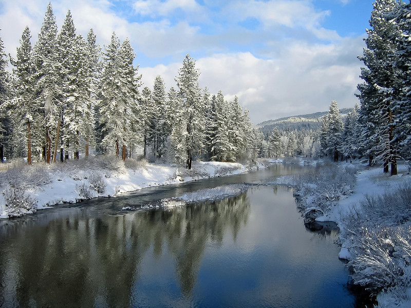 Fresh Snow, Middle Fork Feather River, Graeagle CA