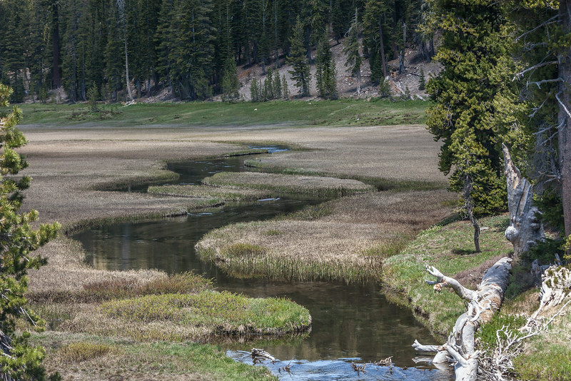 Serpentine Shaped Creek, Lassen National Park CA