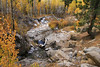 Late Fall Scene, Upper Little Truckee River, Near Highway 89, CA