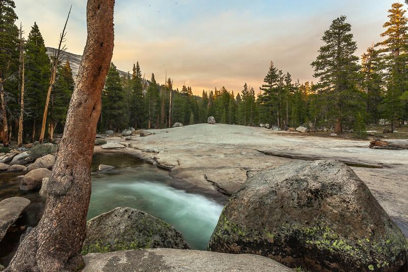 Lyell Fork Scene at Dusk, Yosemite NP