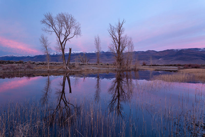 Late winter sunset at Farmer Pond in the Owens Valley