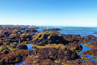 Fort Bragg, California