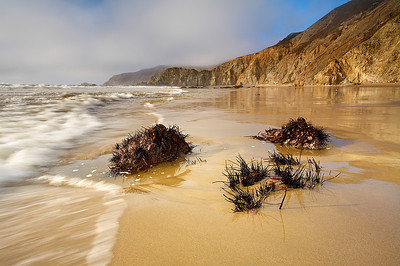 This beach south of McClures Beach and north of Kehoe Beach in the Point Reyes National Seashore can only be reached during an extremely low tide. That is when interesting features such as those in the foreground are exposed.  The sea was quite violent despite the low tide.  An hour later this beach was completely inaccessible but I was back on the main part of the beach by then!  It would be quite dangerous to get stuck in this place.  The cliffs are steep and crumbly and the surf gets huge here.