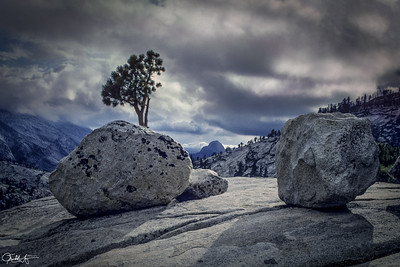 Glacial Erratics, Olmsted Point
