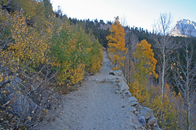 Changing colors along the Bishop Pass Trail.