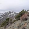 Telescope Peak comes in to view.