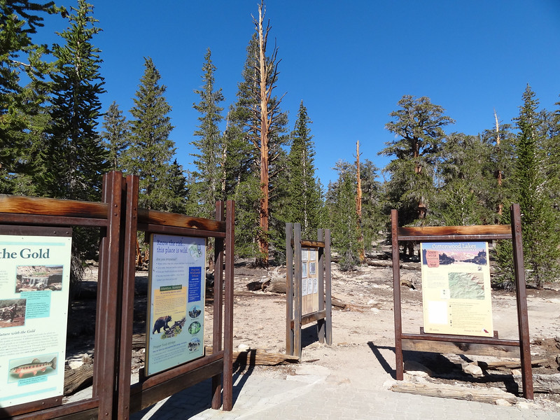 Cottonwood Lakes / New Army Pass Trailhead.
