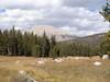 Mt. Guyot.