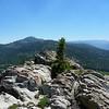 Granite Knob summit view.