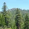 Peak 9021 thru the trees.