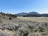 Chimney Meadow.