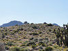 The summit of Peak 6370 is in view.<br /> <br /> Bales behind.