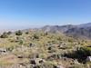Peak 6370 summit view.<br /> <br /> Boulder Peak and more on the ridge.