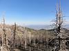 Piute Peak summit view.