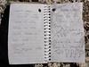 Piute Peak summit register.