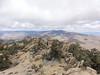Scodie Mountain summit view.