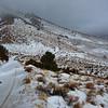 Looking up towards the Owens Peak Trailhead.