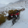 """The bike is finally back on the """"road."""""""