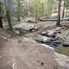 Jackass Creek stream crossing.