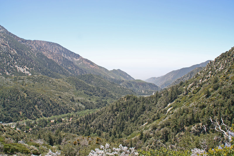 Looking down towards Baldy Village from the Bear Canyon Trail.