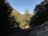 Icehouse Canyon.