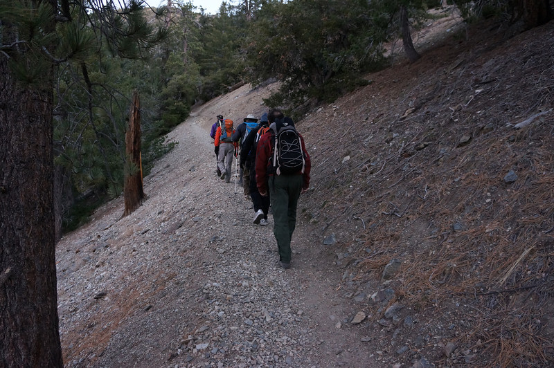 Ten of us heading up the Ski Hut Trail.