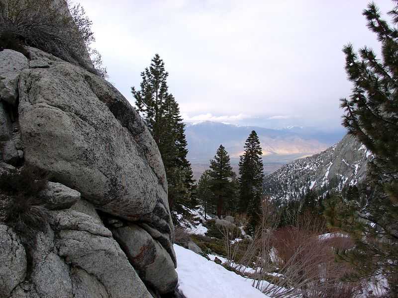 Looking down the North Fork of Lone Pine Creek. Three months earlier, all of the brush was under snow.