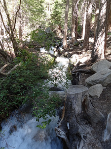The stream at the Portal.