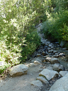 The North Fork of Lone Pine Creek.  2:48pm.