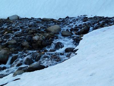 Trailside Meadow stream.