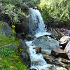 A pretty cascade on the North Fork of Lone Pine Creek.