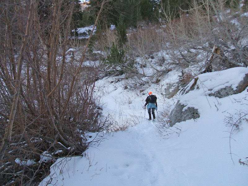 Tina following tracks on the Main Trail.