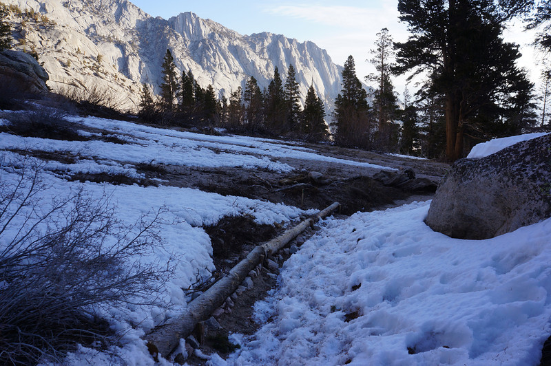 The Main Trail above where you pass the Lone Pine Creek cascade.