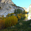 Fall colors on the North Fork of Lone Pine Creek.