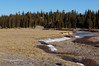 Tuolumne Meadows and River.