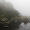 Big Sur in Fog