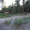 A sign marks the beginning of the dirt road to Mt. Pinos.