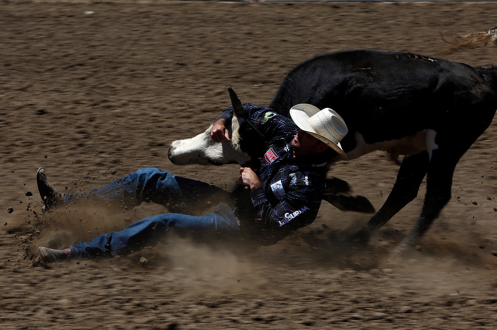 . Cody Cabral of Hilo, HI competes in the steer wrestling event during the California Rodeo Salinas at the rodeo grounds in Salinas on Thursday July 20, 2017. (David Royal/Herald Correspondent)