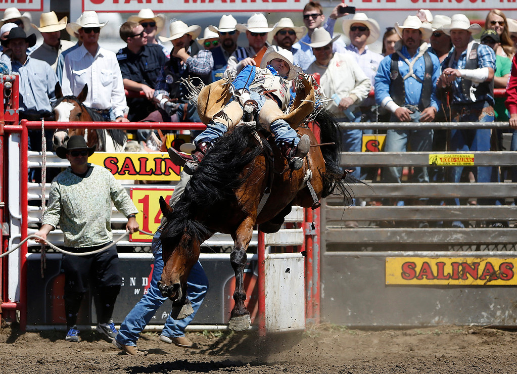 . David Peebles of Redmond, OR competes in the bareback event during the California Rodeo Salinas at the rodeo grounds in Salinas on Saturday July 22, 2017. (David Royal/Herald Correspondent)