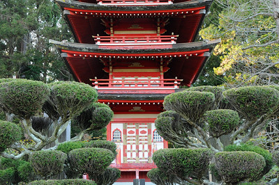California: San Francisco: GGP-Japanese Tea Garden 2012