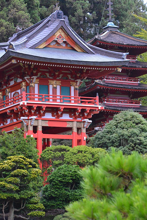 California: San Francisco: GGP-Japanese Tea Garden 2016