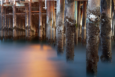 Low tide exposed lots of barnacles and sea anemones on the vertical pilings. At dusk, a light turned on which illuminated the water. It took a while to put order to this rather chaotic scene and wait for the natural evening light to even out with the light from the pier.
